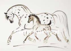 Equestrian Prints