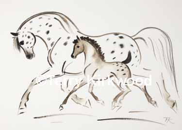 Appaloosa Mare & Foal LE